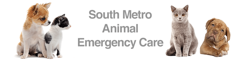 South Metro Animal Emergency Care